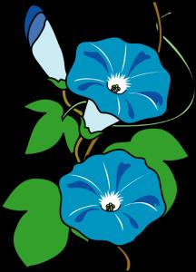 flowersum08